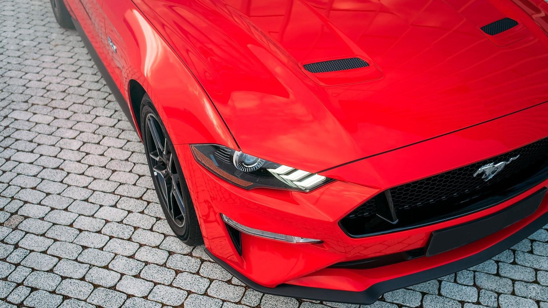 Аренда Ford Mustang GT 5.0  в Москве. Фото 9