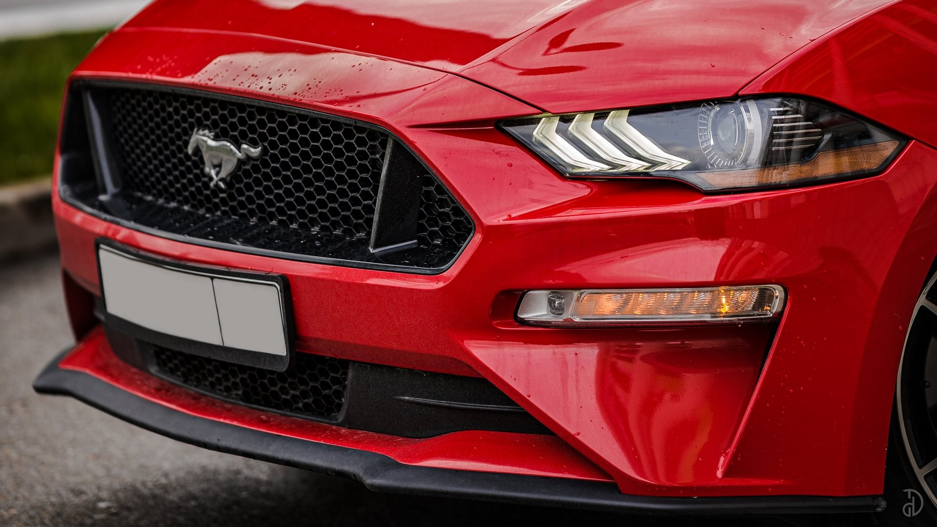 Аренда Ford Mustang GT 5.0 в Сочи. Фото 3