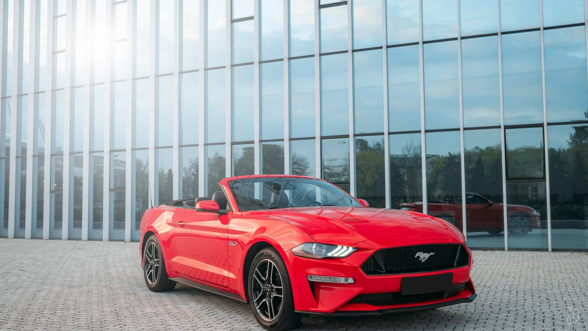 Ford Mustang GT 5.0. Фото 1