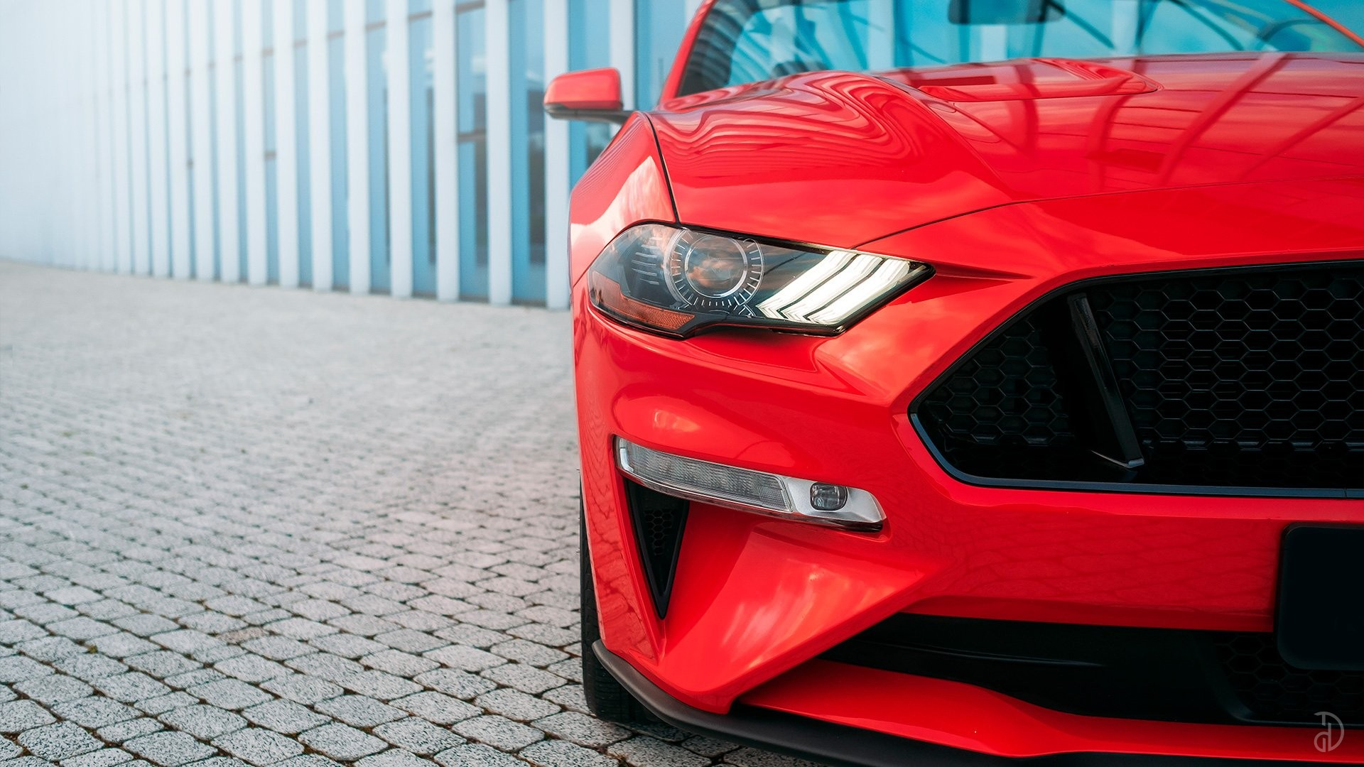 Ford Mustang GT 5.0. Фото 8