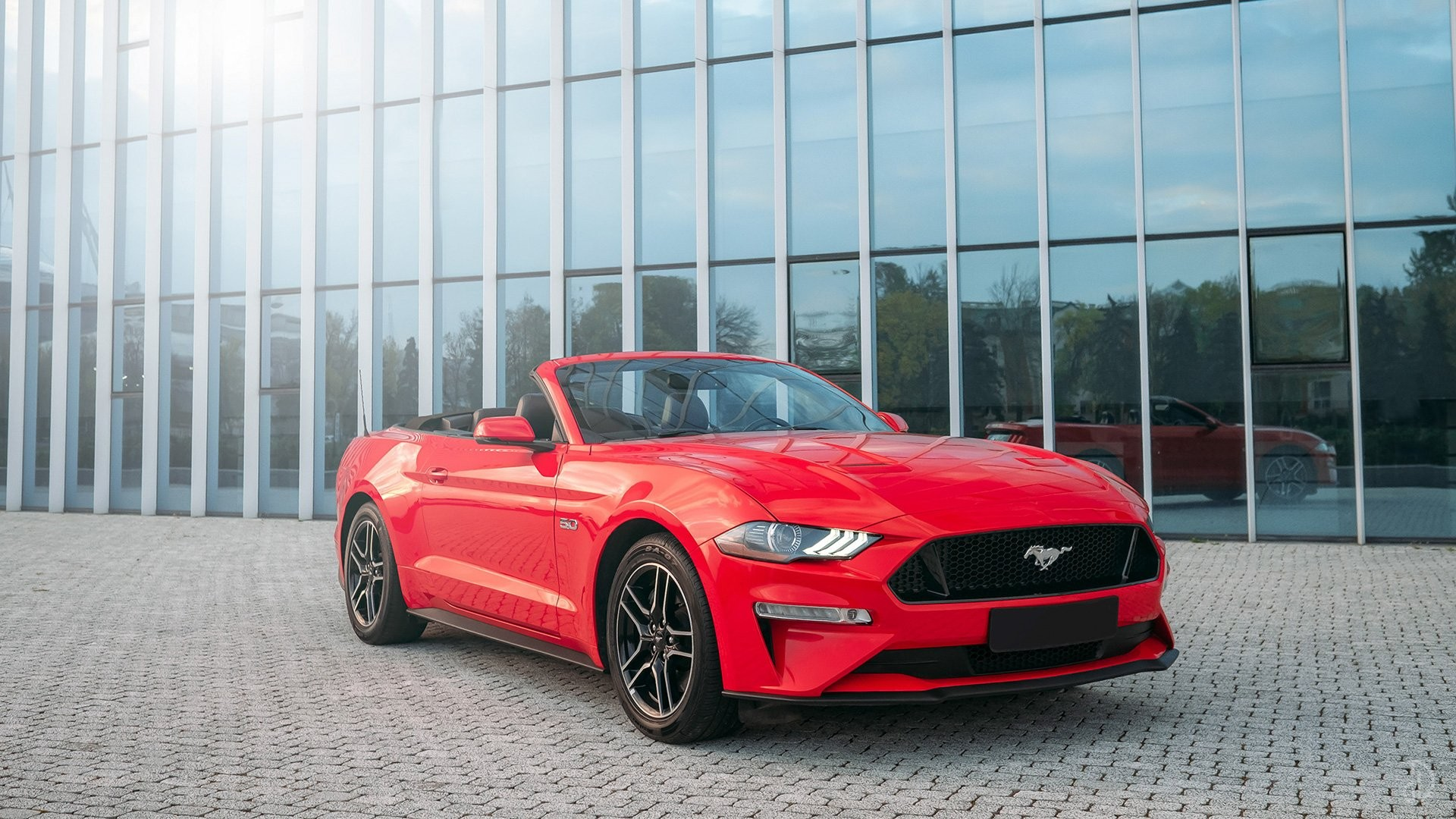 Ford Mustang GT 5.0. Фото 2