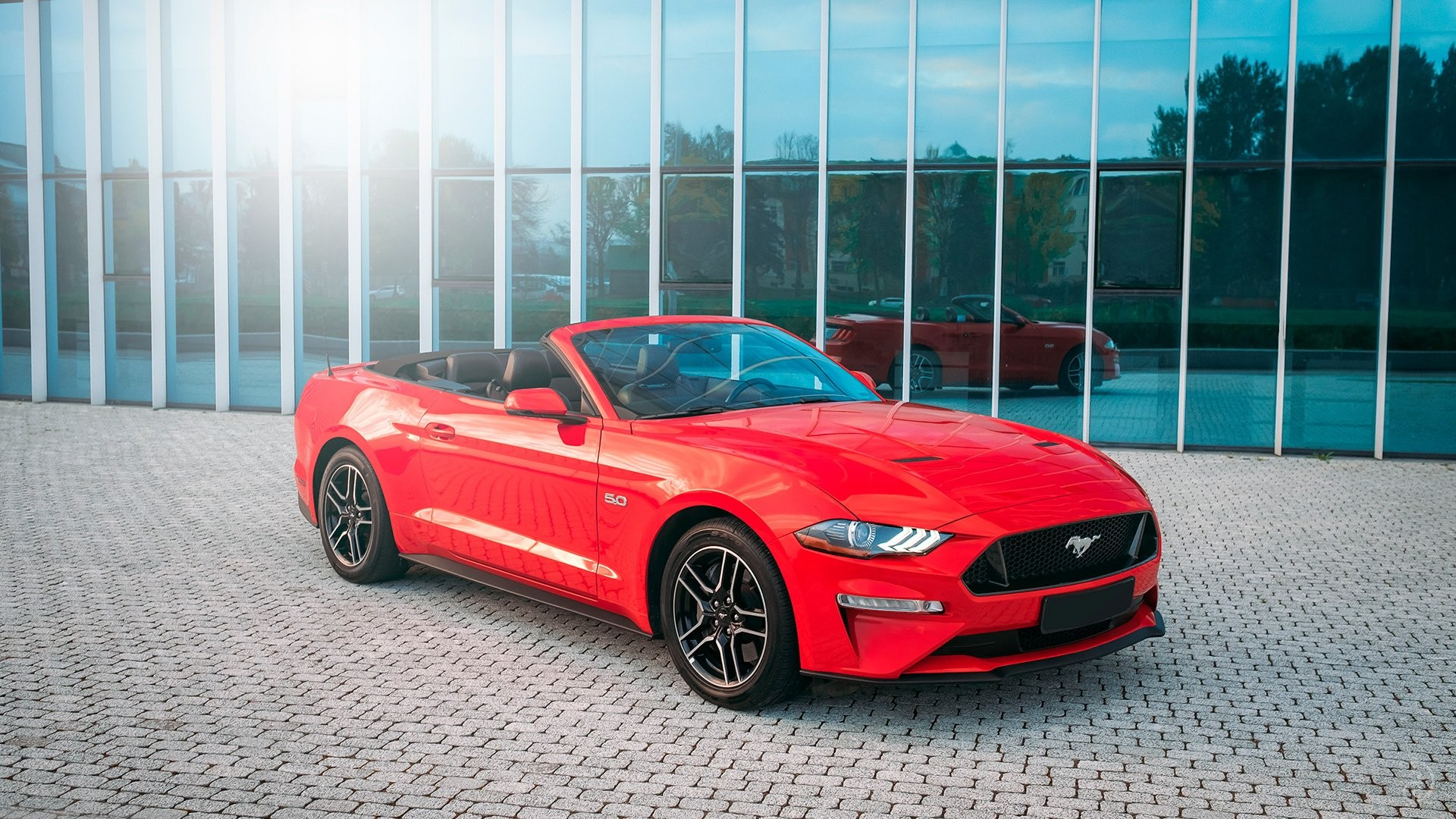 Ford Mustang GT 5.0. Фото 3