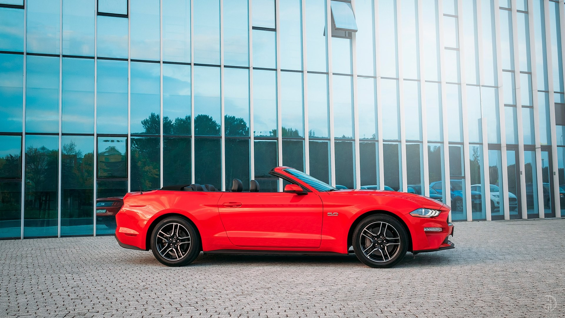Ford Mustang GT 5.0. Фото 4