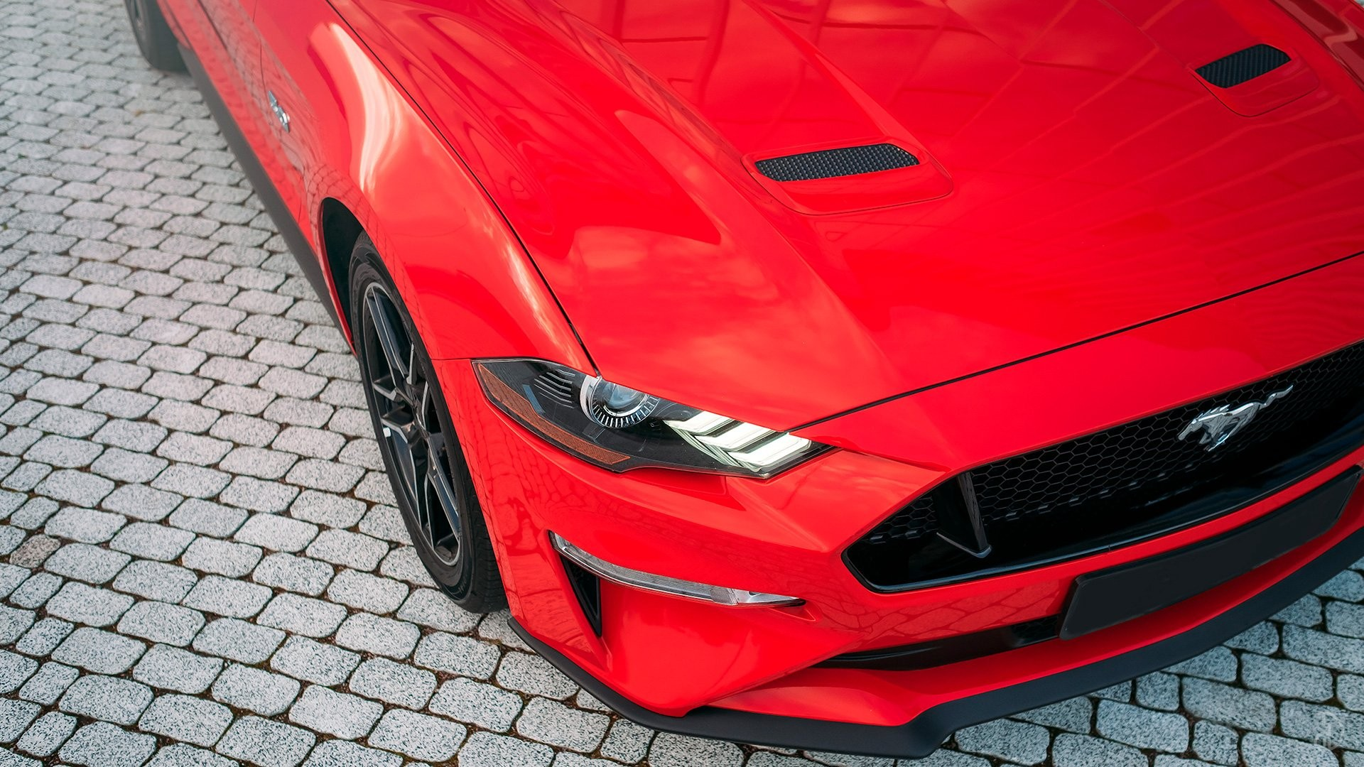 Ford Mustang GT 5.0. Фото 9